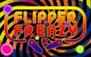flipper frenzy pinball tournament wisconsin